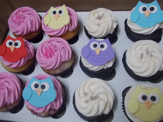 owl themed custom cupcakes